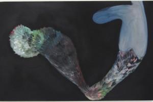 « salammbô schreber », 2011, huile sur toile, 81 x 130 cm