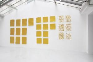 Bernard Aubertin – 20 Monochromes or