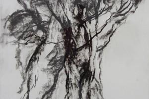 sans titre, 1999, fusain sur papier, 110 x 74 cm