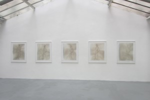 « Figures » – 2012, scanogramme, épreuve pigmentaire, 115 x 96 cm