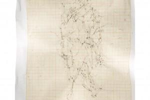 « Figure #11 », 2012, scanogramme, épreuve pigmentaire, 115 x 96 cm