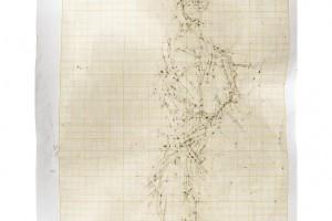 « Figure #3 », 2012, scanogramme, épreuve pigmentaire, 115 x 96 cm