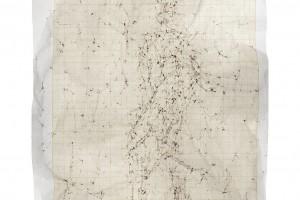 « Figure #5 », 2012, scanogramme, épreuve pigmentaire, 115 x 96 cm