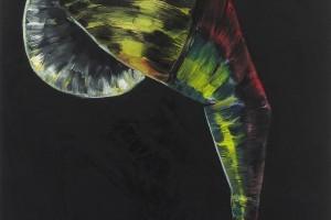 « salammbô schreber (G) », 2010-11, huile sur toile, 92 x 73 cm
