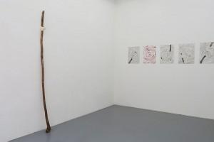 Greffe I, 1991, fil de coton, caillou, arbre, 225 x 10 cm / sans titre, 2016, aquarelles sur papier, 36 x 48 cm