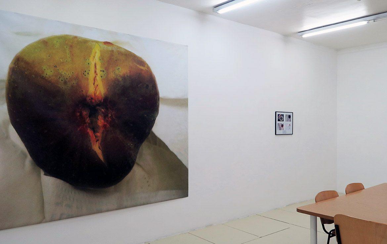 Ficus carica L. (l'entrouverture du fruit), 2009 – Divertissements, 2017