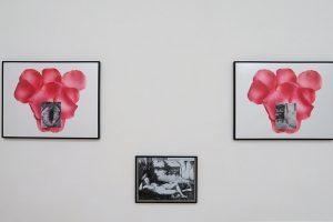 Les flêches d'Artemis, 2017, photographies (50 x 65 cm) et photocopie (28x36,5 cm)